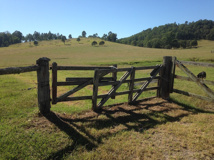 Timber Farm Gates Wolf Rural