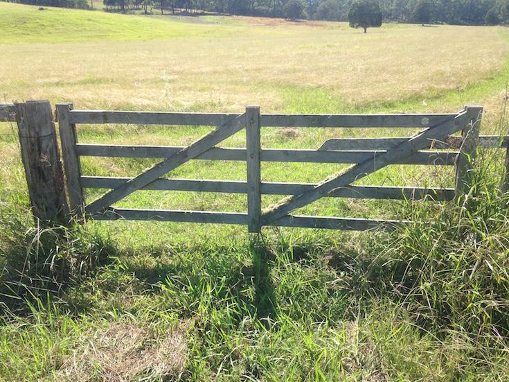 Timber Farm Gates Wolf Rural